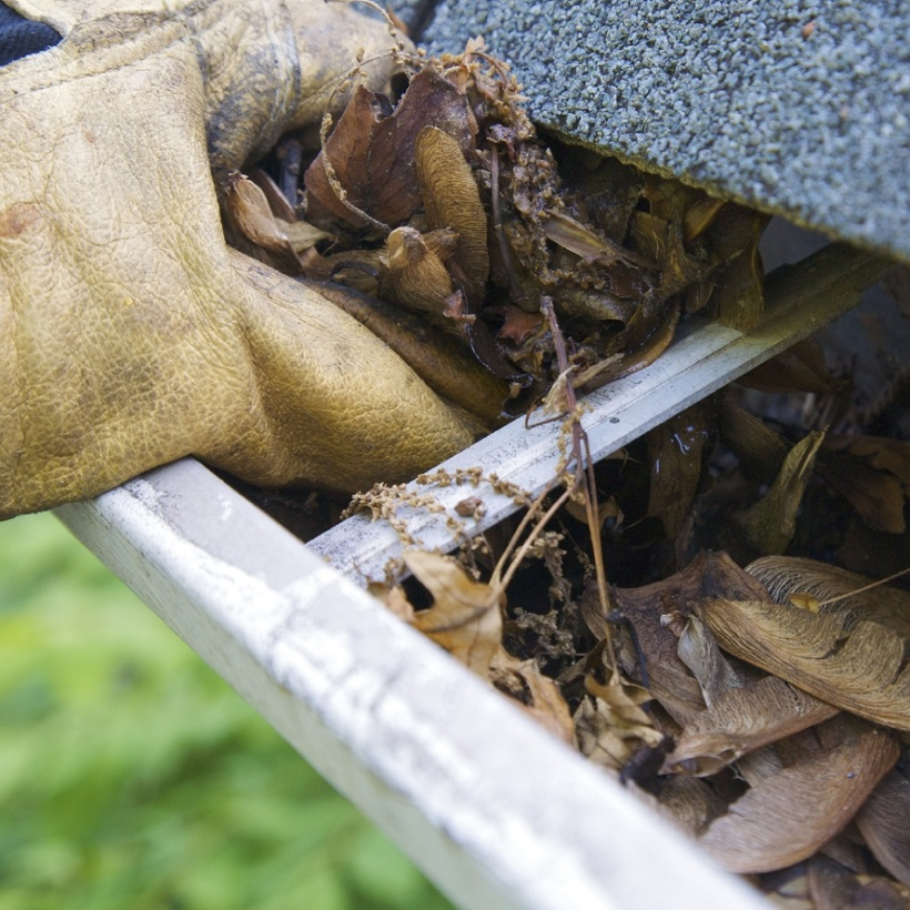 Spring cleaning is the perfect time to check and maintain the gutters and roof.