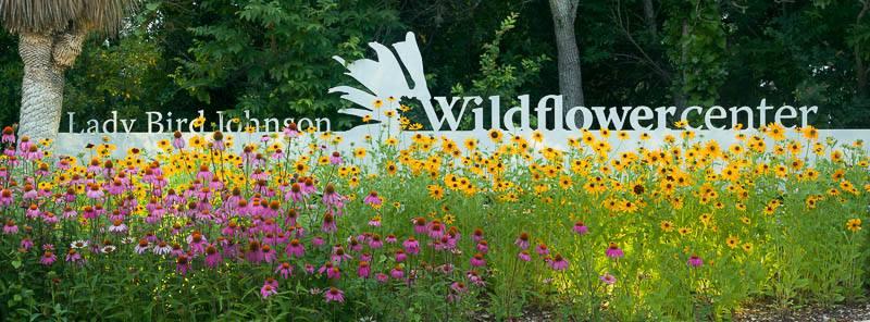 Lady Bird Johnson Wildflower Center in Austin, Texas