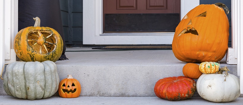 A variety of pumpkins make up a Halloween porch & Halloween tips for both sides of the doorstep