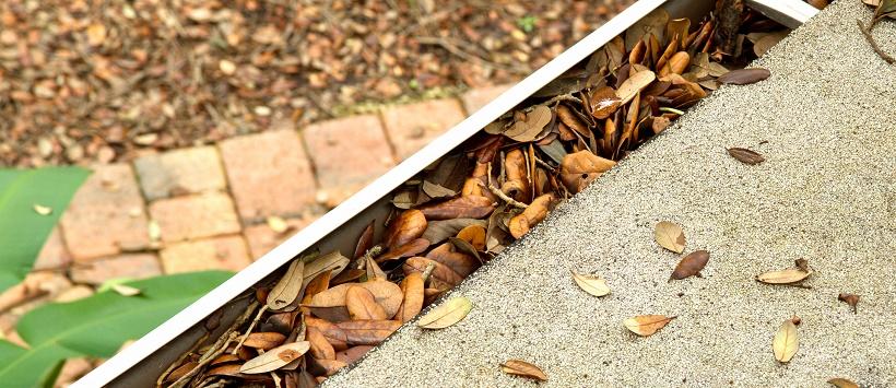 Dried leaves stuffed in a gutter