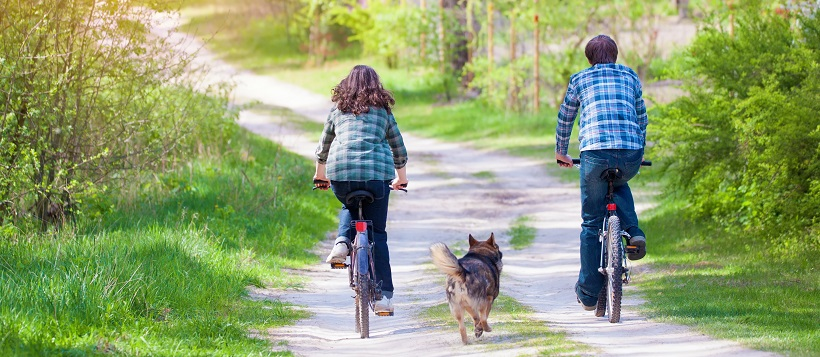 Couple riding bike with dog down a path in a park.