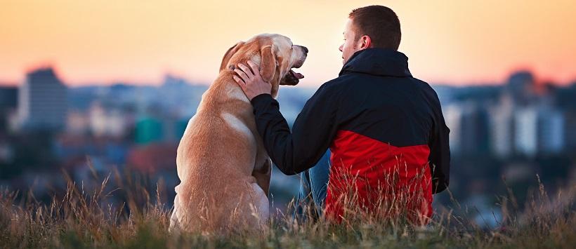 Man sitting with his dog while enjoying a sunset.