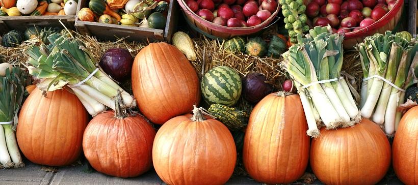 Pumpkins and fall vegetables at a farmer's market.